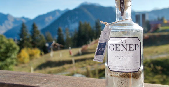 Ready to make Genepi review - Courchevel Enquirer